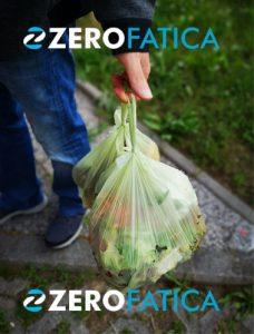 rifiuti organici umido